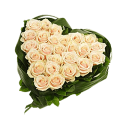 Heart from white roses