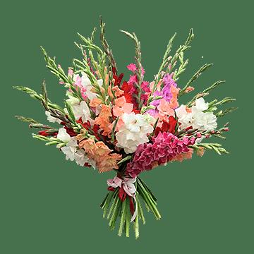 Bouquet gladioli