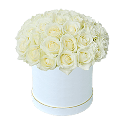 White roses in box