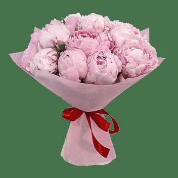 Stock - Bouquet of 15 peonies