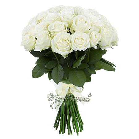 Bouquet of white roses (80 cm.)