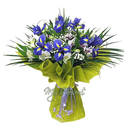Bouquet of irises and alstroemerias