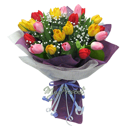 Bouquet of different color tulips