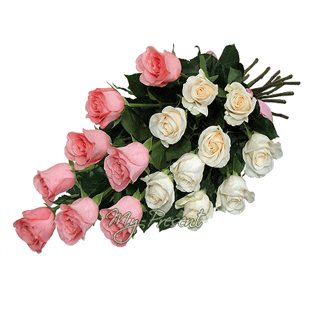 Bouquet of white and pink roses (80 cm.)