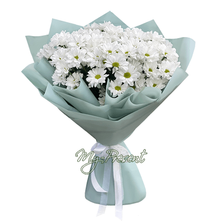 Bouquet of white chrysanthemums in Saratov