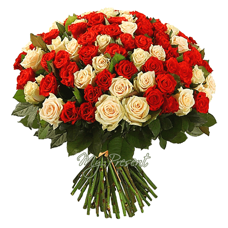 Bouquet of cream and red roses (50 cm.)