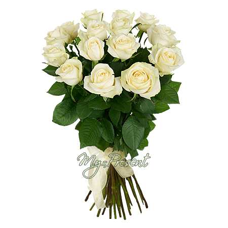 Bouquet of white roses (60 cm.)