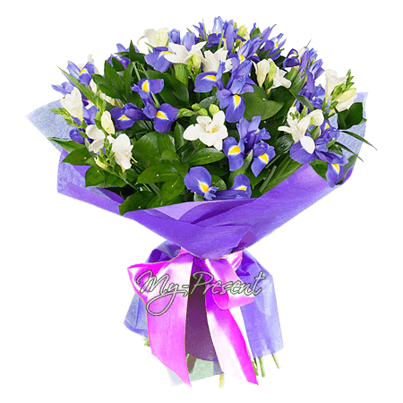 Bouquet of irises and freesias