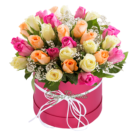 Different color roses in box