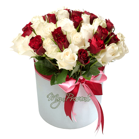 Red and white roses in box