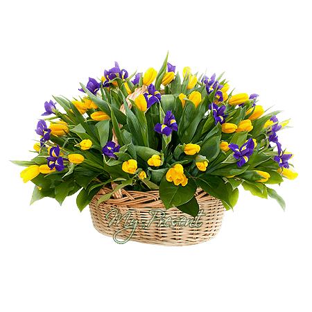 Basket with tulips and irises