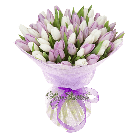 Bouquet of purple and white tulips