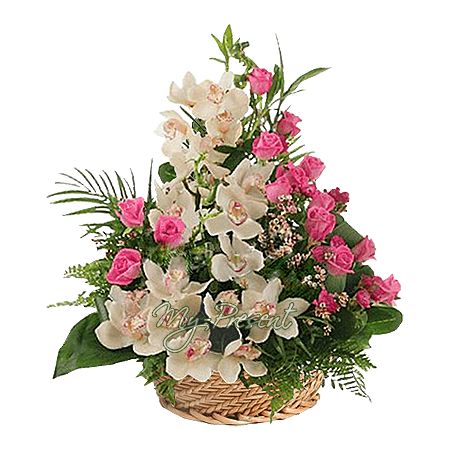 Basket with orchids and roses with verdure