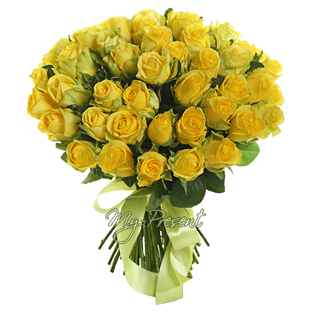 Bouquet of yellow roses (60 cm.)