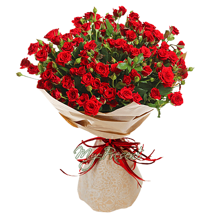 Bouquet of red roses spray