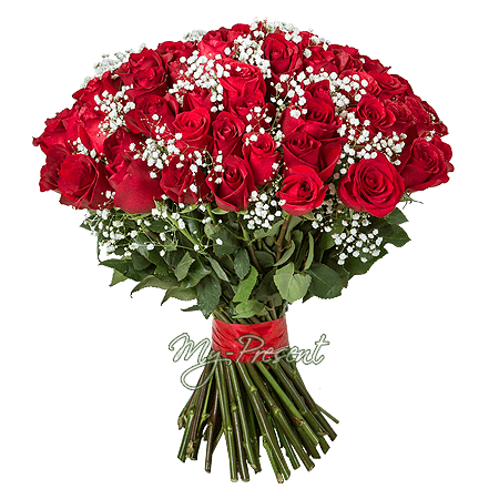 Bouquet of red roses (80 cm.)