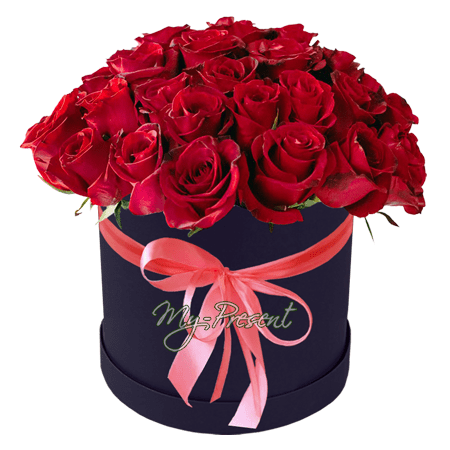 Stock - Red roses in box